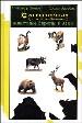 Охотничьи (трофейные) животные Европы и Азии
