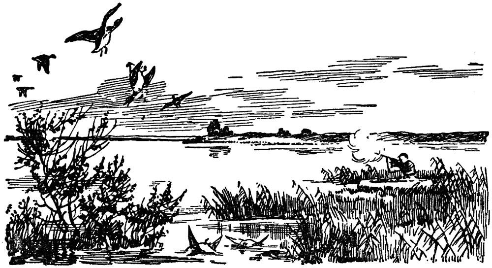 Ветлужская панорама