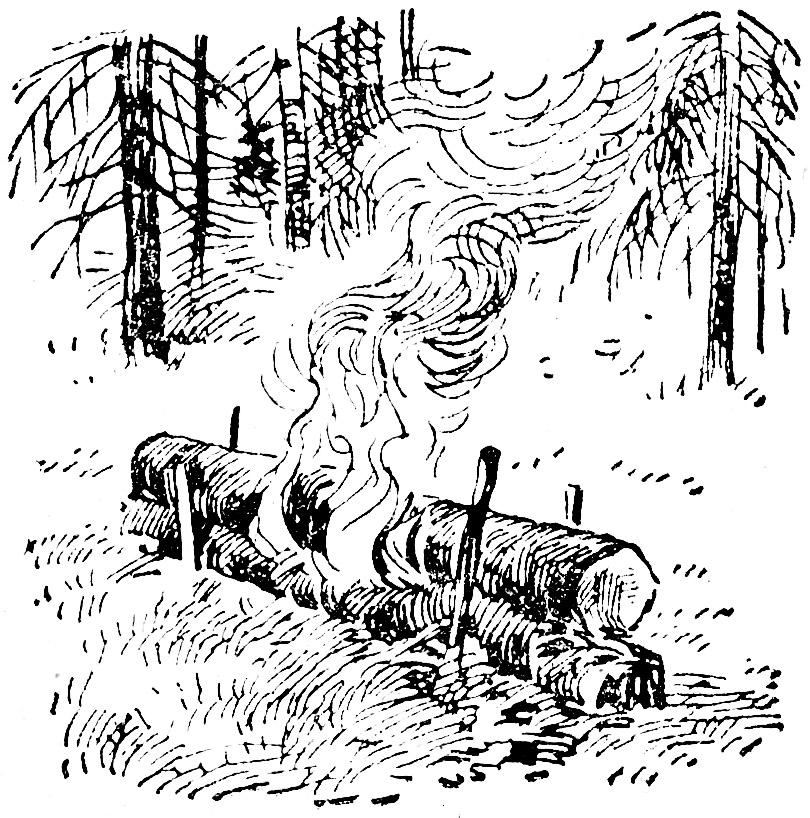 В неодетом лесу