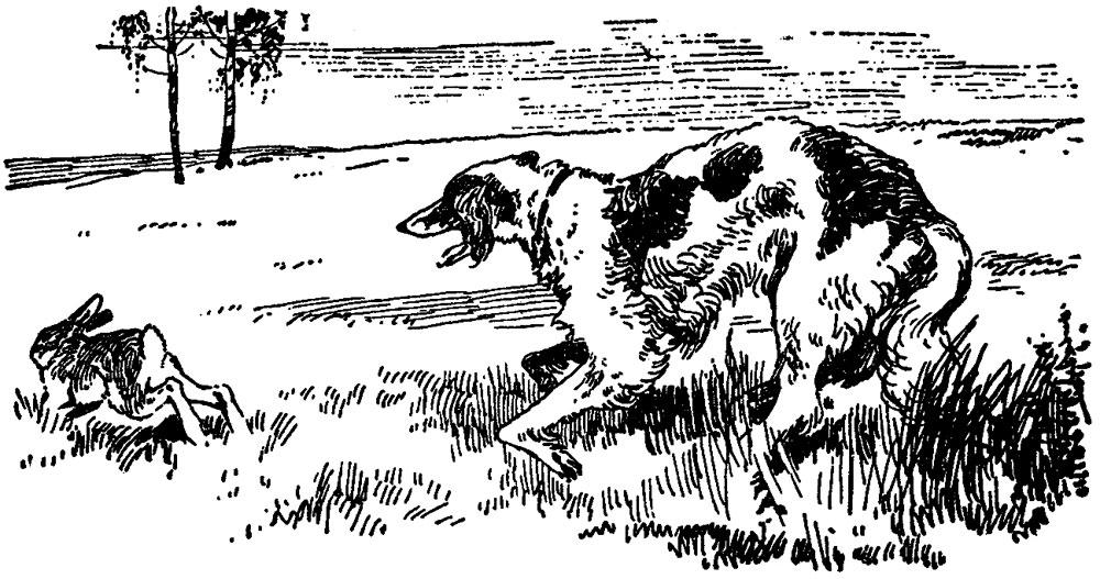 Из записей о Тургеневе-охотнике