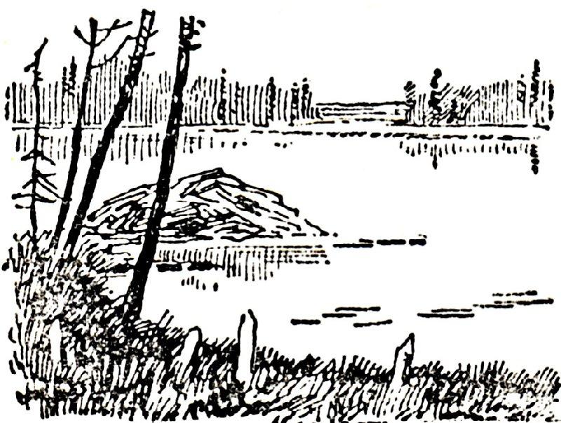 На озере Воже