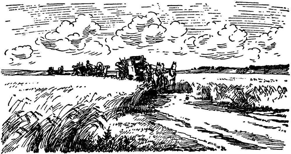 Поездка в Карачевские болота