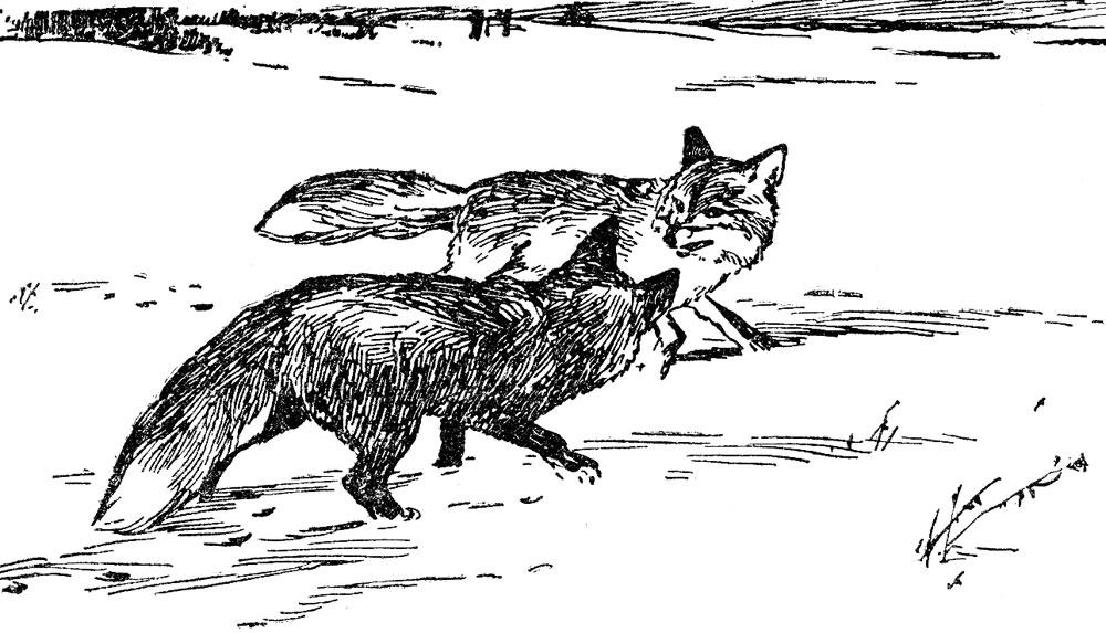 Охотничья зима