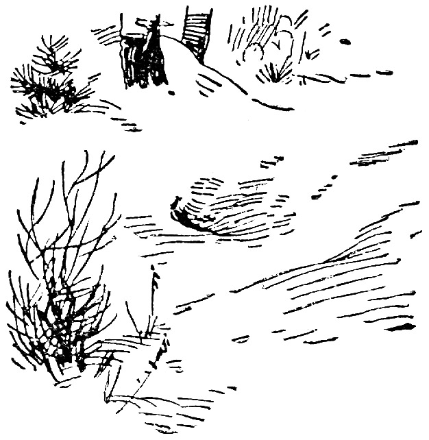 Зима  (отрывок)