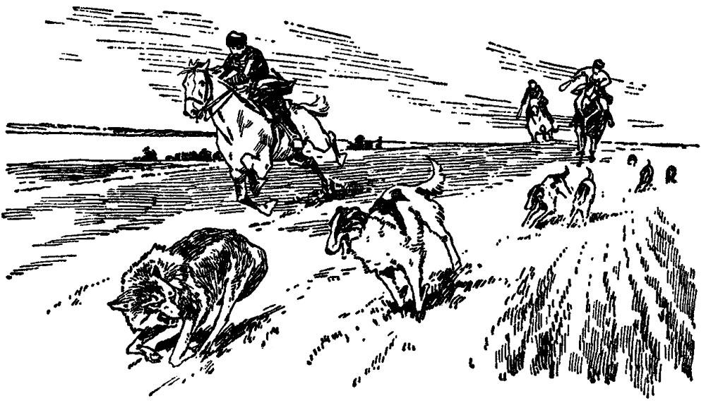 Четыре дня в деревне псового охотника