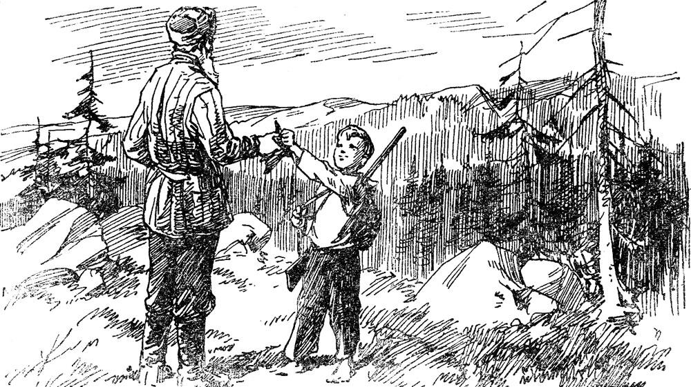 В лесах Урала
