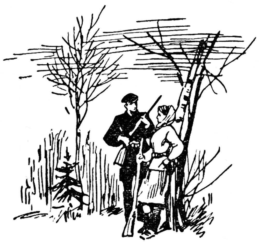 В смоленских лесах