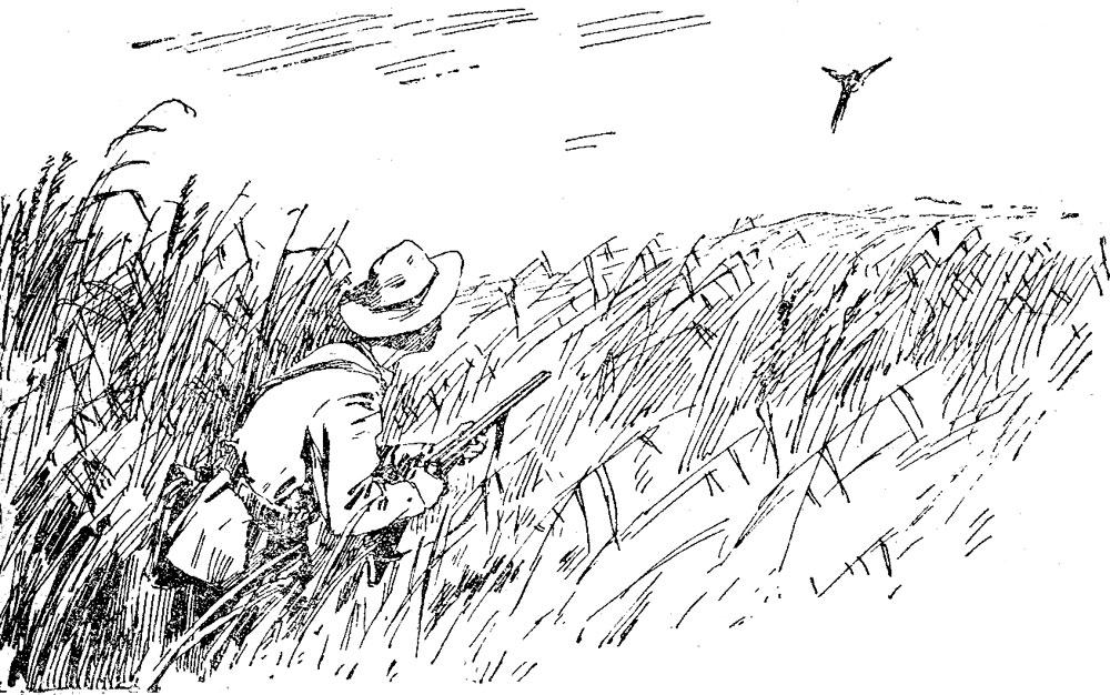 По охотничьим тропам