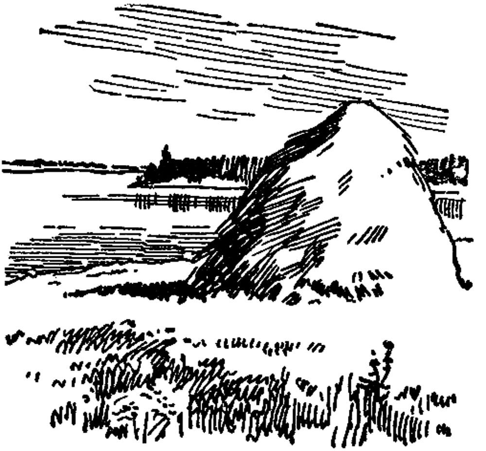На Плещеевом озере