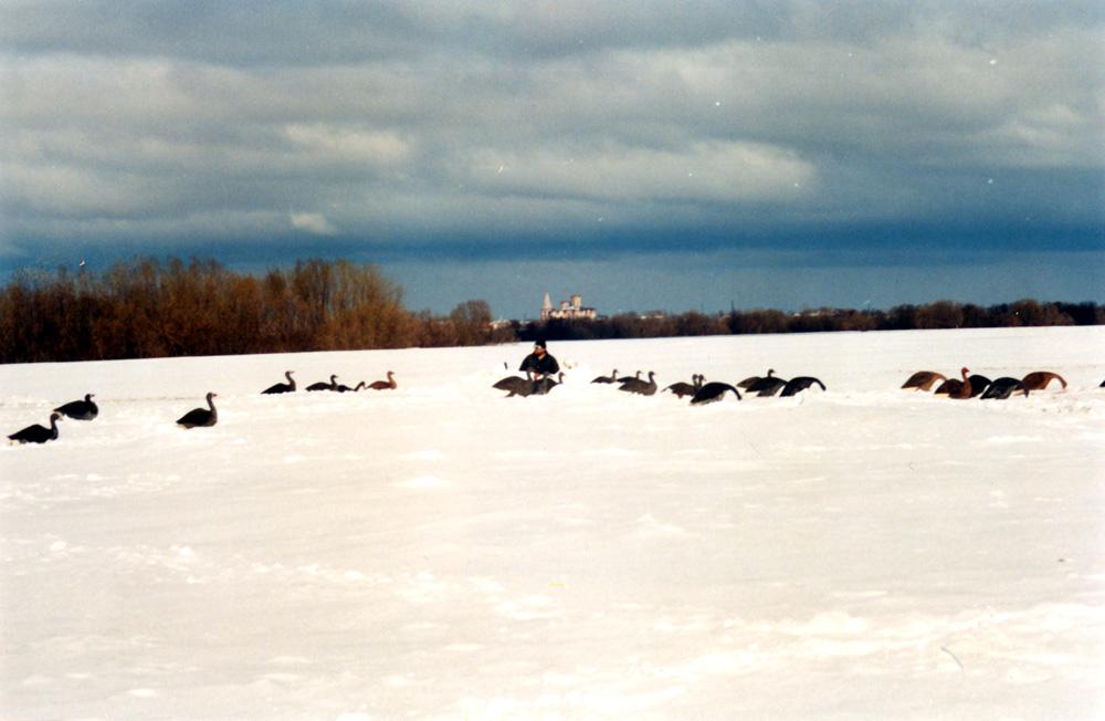 На фоне белого снега наш «табун» виден теперь на многие километры