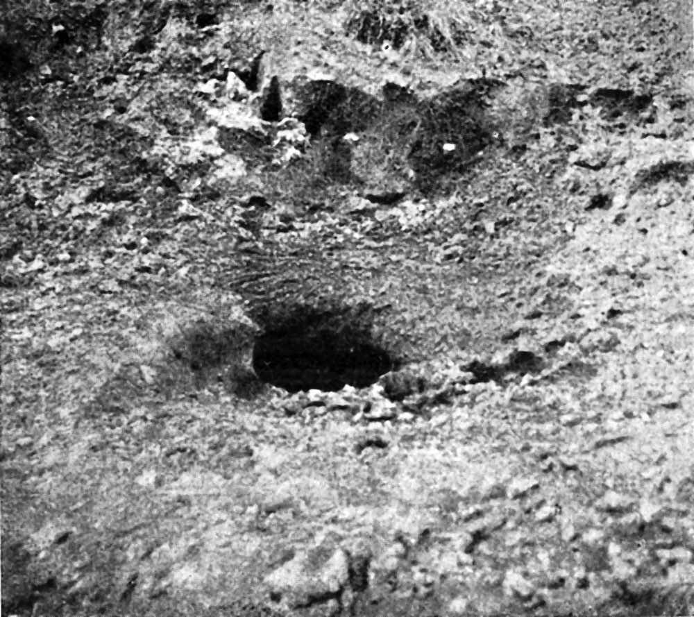 Старый солонец; видно отверстие ямы глубиной около 1 аршина, выеденной изюбрями