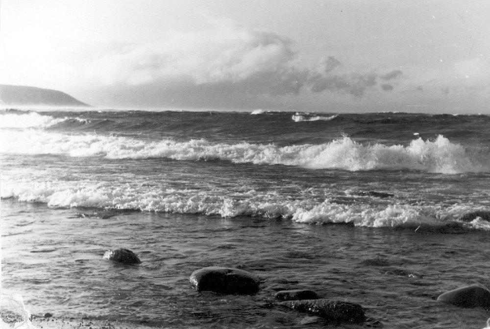Берег «славного моря» — бухта Давше