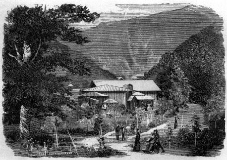 Боржомские минеральные воды (рисунок из книги «Живописная Россия», М., 1883, т. 9, с. 109.)