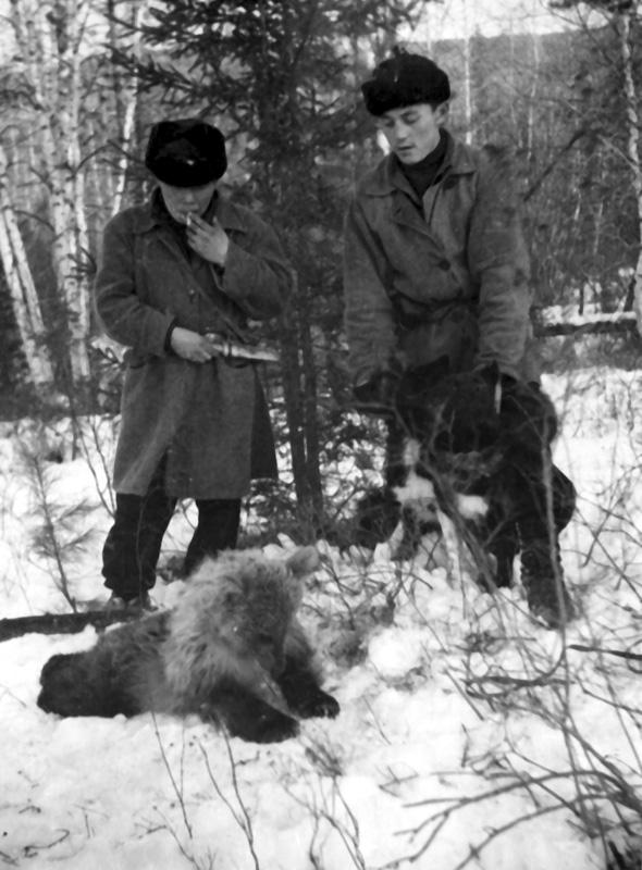 Северьян Сафонов (справа) и Петр Корнаков. Добыли медвежонка! Киренга, 1955 г.