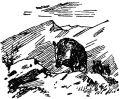 В горах Закавказья