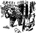 Медведь в берлоге