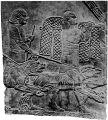 Рис. 6. Ассирийские военные собаки