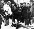 Хороший трофей у ног охотников. В. Шаталов (второй слева), А. Филипченко (третий справа)